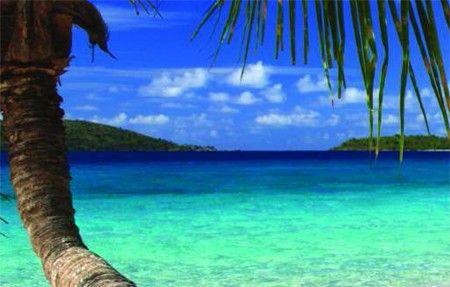 Cayman Pic