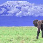lifelist-kilimanjaro-631