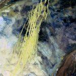 Landsat5_07