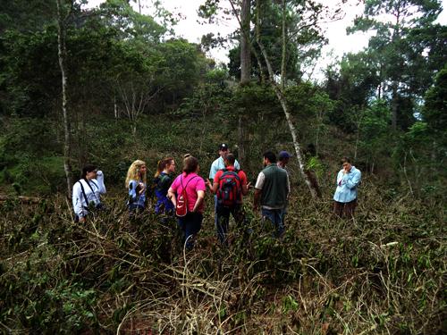 OSU team witnesses effects of Rust on coffee farm
